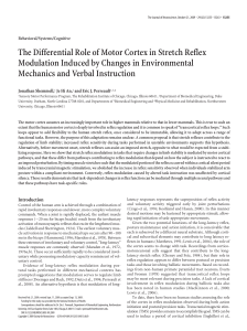 The Differential Role of Motor Cortex in Stretch Reflex Modulation