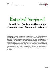 Botanical Vampires! - Macquarie University