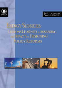 Energy Subsidies: Lessons Learned in Assessing - UNEP