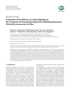 Evaluation of the Efficacy of a Bacteriophage in the Treatment of