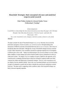 Household Strategies: their conceptual relevance and analytical
