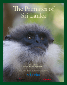 The Primates of Sri Lanka