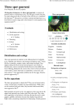 Three spot gourami - Wikipedia, the free encyclopedia