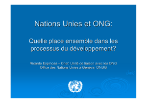 pdf (English) R. Espinosa - NGO and UN