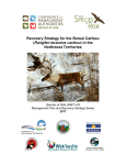 Recovery Strategy for the Boreal Caribou in the NWT (2017)