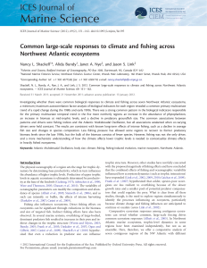 Common large-scale responses to climate and fishing across