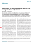 Integration of the olfactory code across dendritic