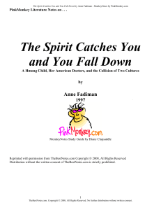 """the spirit catches you and you fall down essay paper Praise for the spirit catches you and you fall down """"fadiman describes with extraordinary skill the colliding worlds of western medicine and hmong culture."""