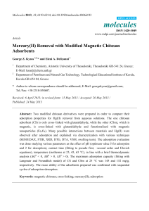 Mercury(II) Removal with Modified Magnetic Chitosan Adsorbents