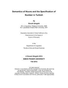 Semantics of Nouns and the Specification of