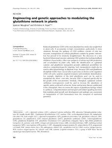 Engineering and genetic approaches to modulating the