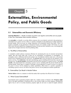 Externalities, Environmental Policy, and Public Goods