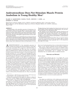 Androstenedione Does Not Stimulate Muscle Protein Anabolism in