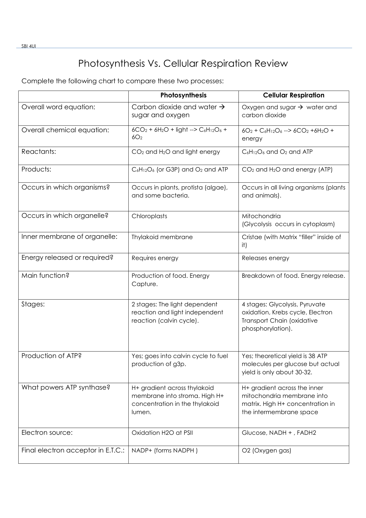 Photosynthesis Vs. Cell Respiration worksheet answers