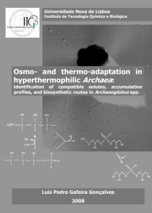 Osmo- and thermo-adaptation in hyperthermophilic Archaea
