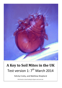 A Key to Soil Mites in the UK Test version 1: 7 March 2014