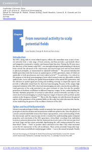 1From neuronal activity to scalp potential fields - Assets