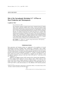 Role of the Sarcoplasmic Reticulum Ca2+-ATPase