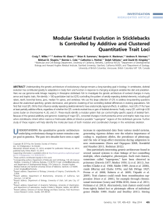 Modular Skeletal Evolution in Sticklebacks Is Controlled by Additive