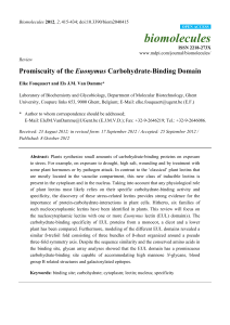 Promiscuity of the Euonymus Carbohydrate-Binding Domain