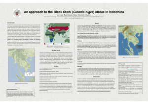 An approach to the Black Stork (Ciconia nigra) status in Indochina