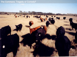 Tragedy and Comedy of the Commons