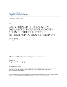 early spring phytoplankton dynamics in the subpolar north atlantic