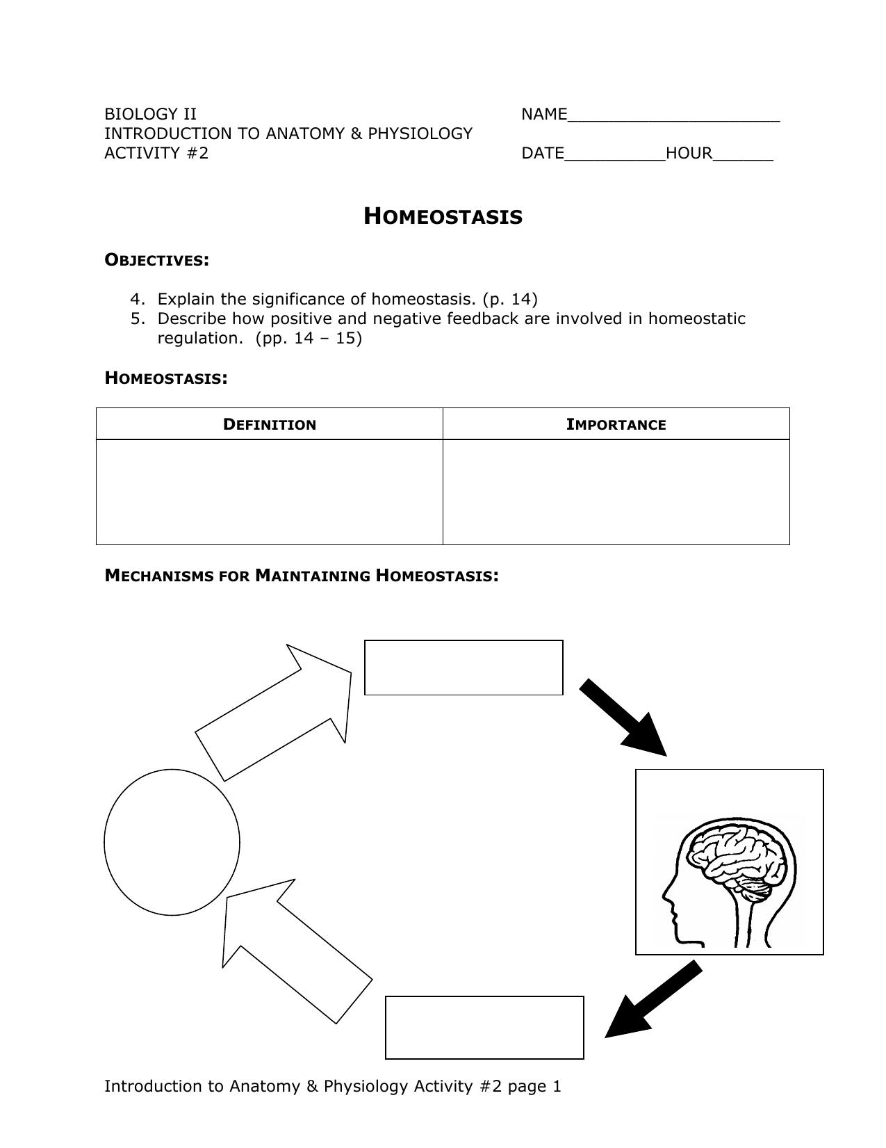 Negative Feedback Mechanism Anatomy Choice Image - human body anatomy