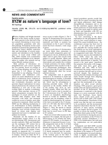 XYZW as nature`s language of love?