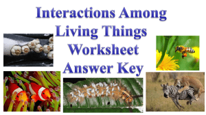 Interactions Worksheet ANSWER KEY