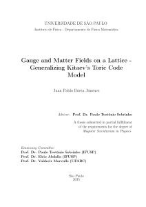 Gauge and Matter Fields on a Lattice - Generalizing