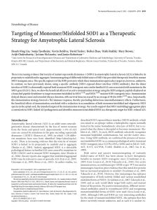 Targeting of Monomer/Misfolded SOD1 as a Therapeutic Strategy for