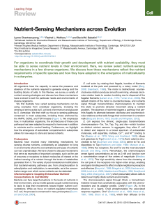 Nutrient-Sensing Mechanisms across Evolution - Sabatini Lab