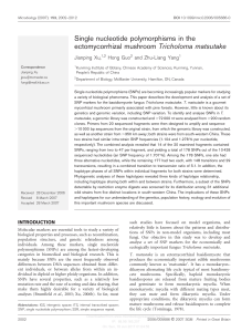 Single nucleotide polymorphisms in the ectomycorrhizal mushroom