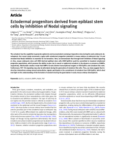 Ectodermal progenitors derived from epiblast
