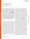 The wages of CIN - The Journal of Cell Biology