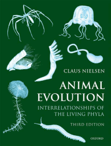 Animal Evolution - Amazon Web Services