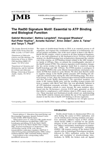 The Rad50 Signature Motif: Essential to ATP Binding and