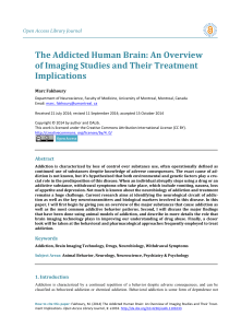 The Addicted Human Brain: An Overview of Imaging Studies and