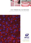 ATCC® PRIMARY CELL CuLTuRE GuIdE