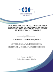 polarization effects generated through the