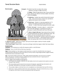 Forest Exploration – Student Data Sheet