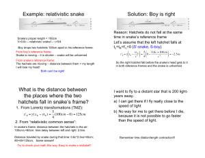 Example: relativistic snake Solution: Boy is right What is the distance