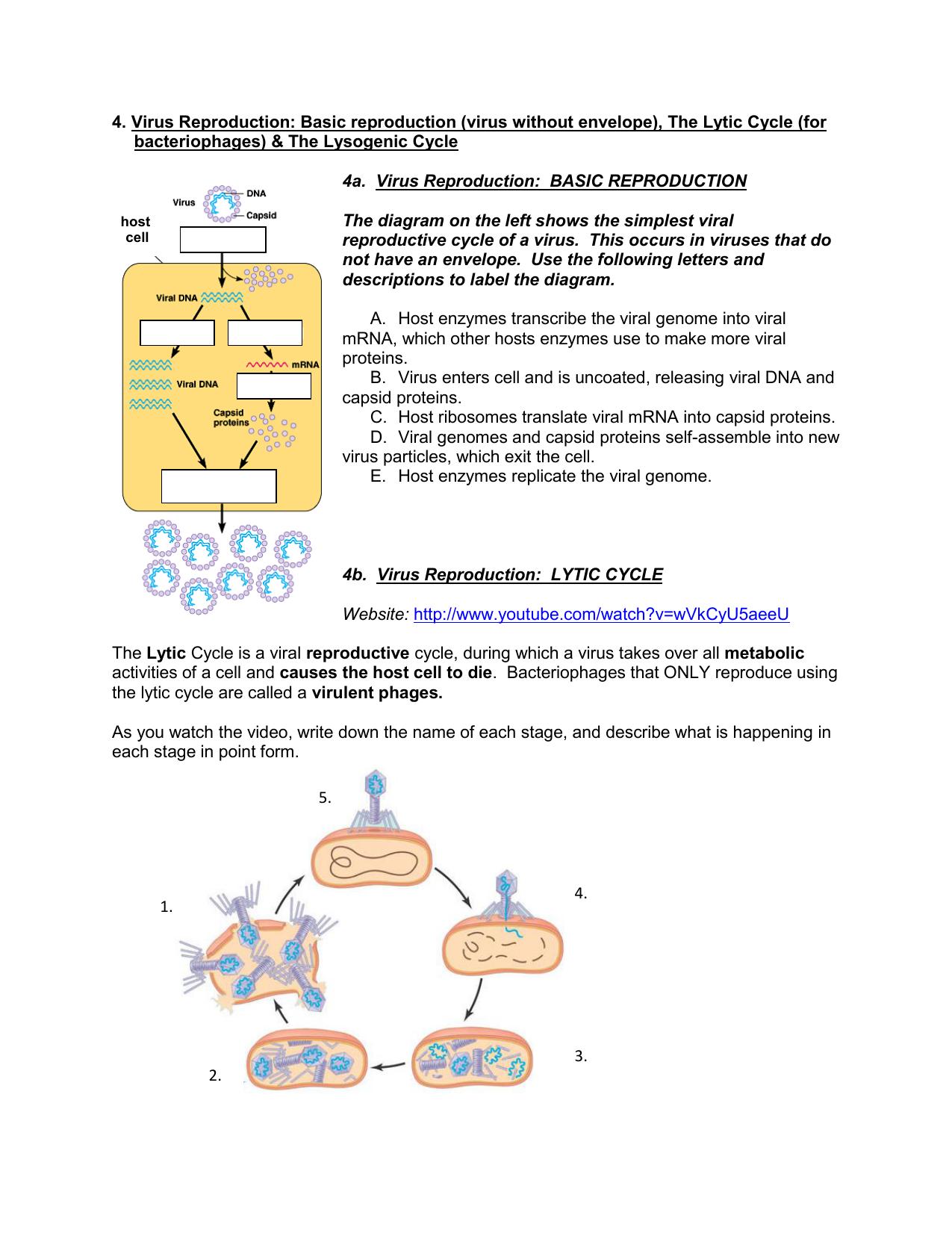 homework 20.1 viruses