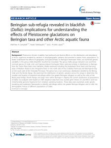 Beringian sub-refugia revealed in blackfish (Dallia