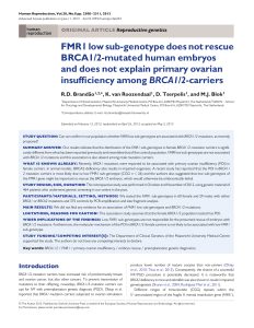 FMR1 low sub-genotype does not rescue BRCA1