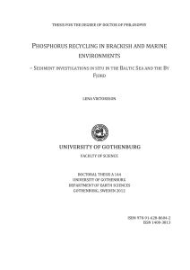 phosphorus recycling in brackish and marine environments