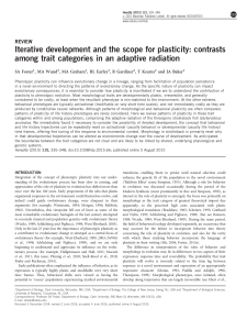 Iterative development and the scope for plasticity: contrasts