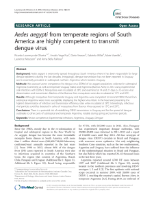 Aedes aegypti from temperate regions of South - Arca
