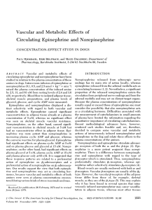Vascular and Metabolic Effects of Circulating Epinephrine and